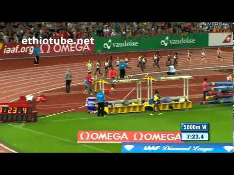 2013 Diamond League Zürich - Meseret Defar vs Tirunesh Dibaba in 5000m