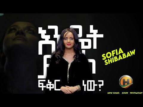 Sofia shibabaw