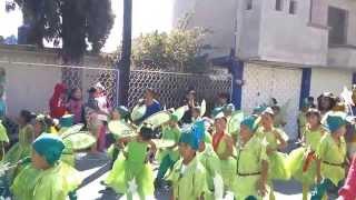 Santa Apolonia Teacalco 2014 Desfile de Feria