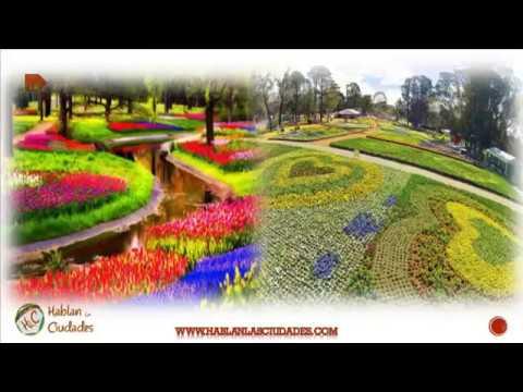 Canberra La Ciudad Artificial | Canberra El Corazón Australiano