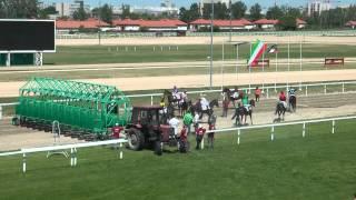 A hely: Lóversenypályák -- 1.rész