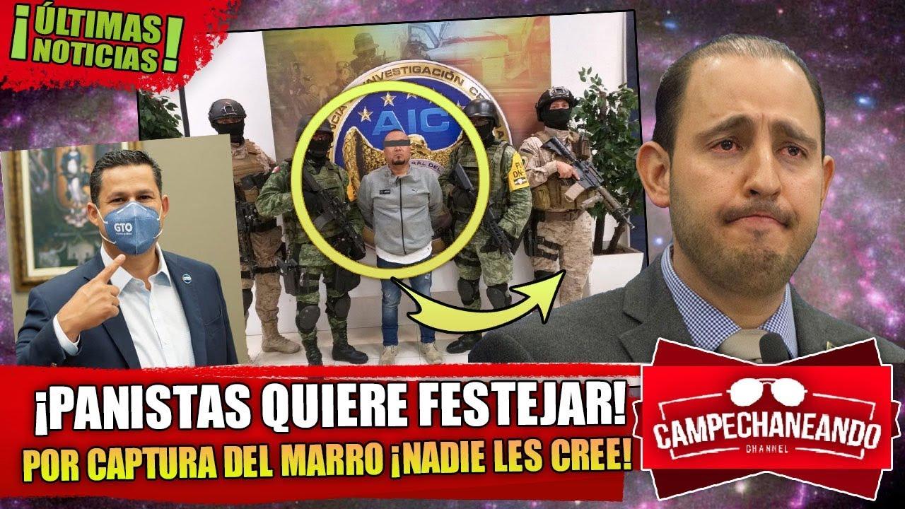 ESTO ACABA DE PASAR! PANISTAS QUIEREN FESTEJAR LA CAPTURA DEL MARRO ¡NADIE LES CREE!