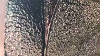 Жидкая шумоизоляция арок колес автомобиля Renault Sandero (Рено Сандеро)