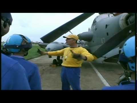 Chien jaune-Porte Avions CDG