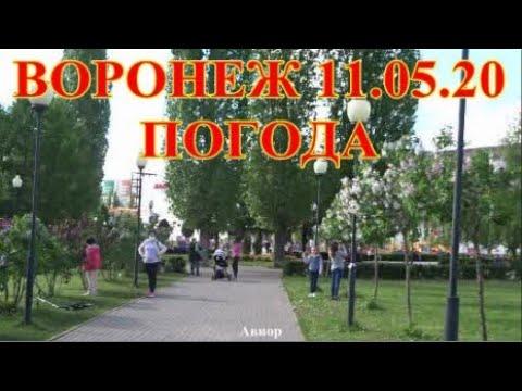 ВОРОНЕЖ 11.05.20 ПОГОДА