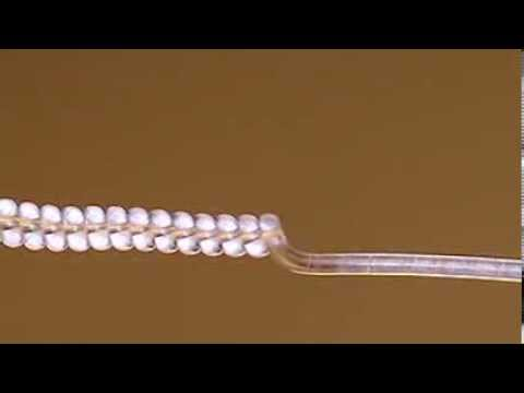 Artificial Muscles from Fishing Line and Sewing Thread