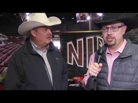 Top Equine Genetics Offered at NILE Gold Buckle Select Horse Sales