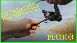 Сезон 2020 после нереста щуки Рыбалка на Кубани Попали в жер щуки Брюховецкий район Часть 2