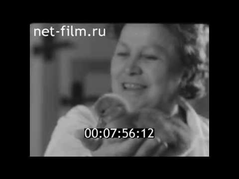 "1966г. Рассказово. птицефабрика ""Арженка"". Тамбовская обл"