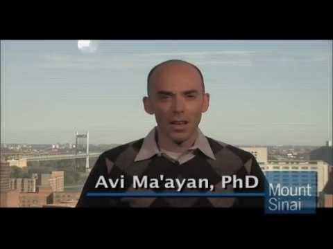 Network Analysis in Systems Biology Coursera Promo by Professor Avi Ma'ayan