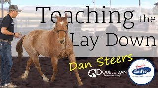 Teaching the Lay Down - Double Dan Horsemanship