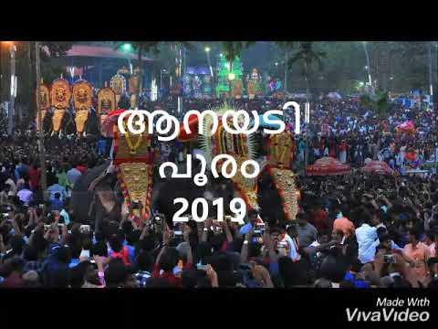 Anayadi pooram 2019
