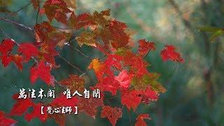 01佛陀-07.萬法本閑 唯人自鬧【覺心法師】