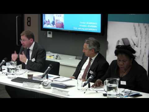 Questions and discussion - CAPE 2013: A case in point? The experience of Mozambique