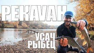 Осенняя рыбалка на реке Ваг.