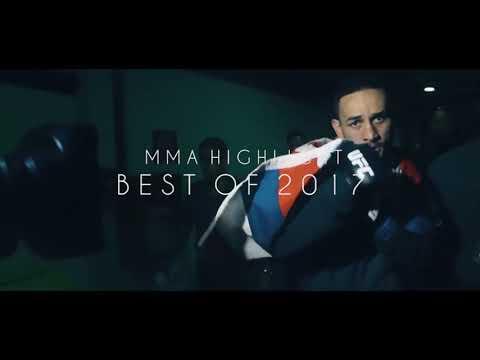 UFC MMA HIGHLIGHT BEST MUSIC [ 2017]