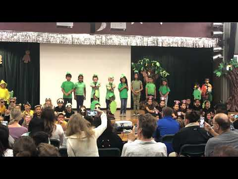 Woodcan What Wood Canyon Elementary school 2nd grade kids performing rainforest