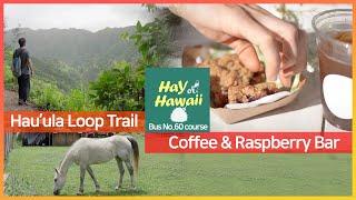 【하와이 버스 여행】 하우울라 트레일 | 커피 &…