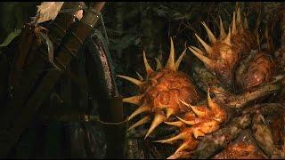Witcher 3 2015 - Шепчущий холм, убийство сердца дерева, ГЕЙМПЛЕЙ