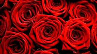 Red Roses For My Lady-Engelbert Humperdinck