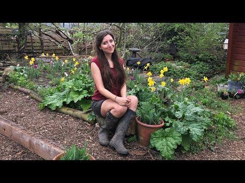 April Allotment Garden Tour 2018