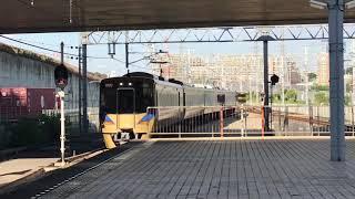 【泉北高速鉄道】12000系による特急『泉北ライナー』和泉中央駅に到着