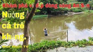 khám phá vẻ đẹp dòng sông An Sơn  nướng cá trê khủng ăn cực ngon và thú vị  Hieu Pham TV.