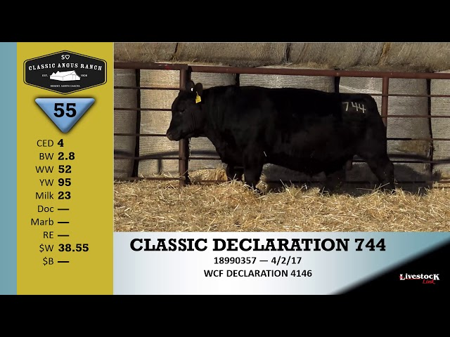 Classic Angus Ranch Lot 55