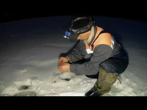 Ночная ловля СОПЫ на поставушки.