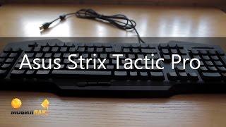 Обзор геймерской клавиатуры Asus Strix Tactic Pro!