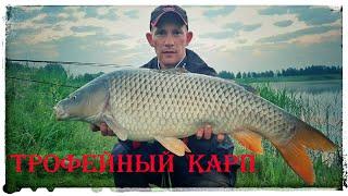 Трофейный Карп на бойлы Отличная рыбалка Супер выходные