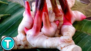 Top 10 Vegetables You've Never Heard Of Part 3