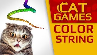 CAT GAMES - 😺 AMAZING COLOR STRING !!! (VIDEOS FOR CATS TO WATCH) 60FPS