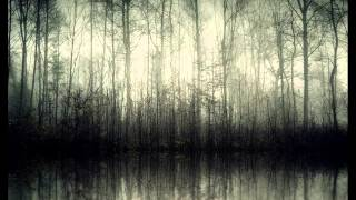 Darkthrone - Transylvanian Hunger - 08 - En As I Dype Skogen