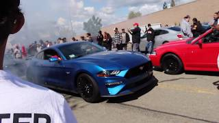 Stang Up The Bay 2K18 With Jordan Harris And Friends. Racing Donuts Burnouts And Cops !