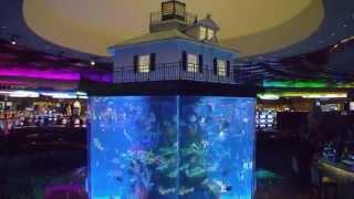 Aquamen 4 : morceaux choisis