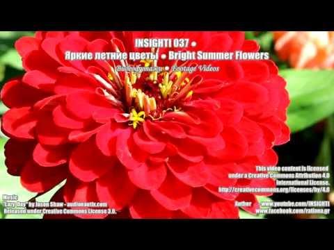 Лучший интернет-магазин цветов, букетов и подарков в Киеве