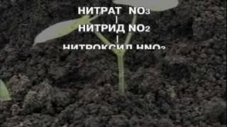 ч.16 - Технология доктора Миттлайдера (библиотека OGOROD.ua)