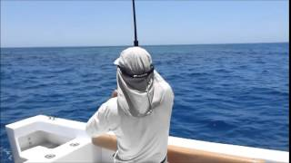 Séjour de pêche en Egypte (Jig et lancer).