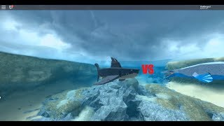Roblox Dinosaur Simulator Megalodon VS Mosasaurus