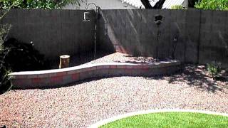 Arizona Professional Landscape - Backyard Landscaping