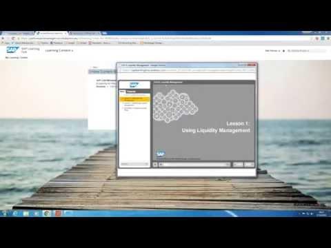 SAP Learning Hub - Simple Finance Demo