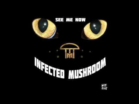 Infected Mushroom -