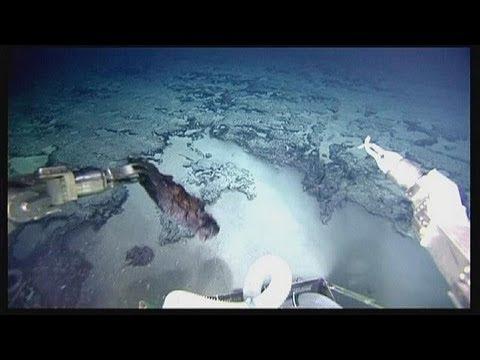 Scoperto un continente sommerso sotto l'Oceano Atlantico: E' Atlantide? - science