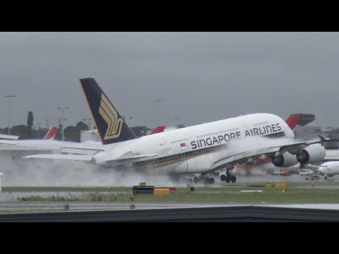 [4K] 40+ Minutes of Amazing Plane Spotting at Syndey Intl. Airport (SYD/YSSY)