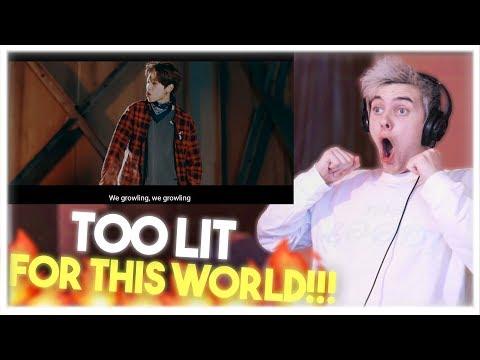 Stray Kids - GRRR (총량의 법칙) Perfromance MV Reaction!! [TOO LIT FOR THIS WORLD!!!]