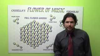 Download Platonic Solids in the Flower of Music: God is a Musician by Tom Cassella