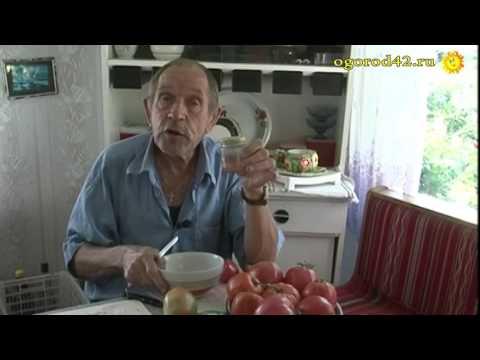 Как получить свои семена томатов?