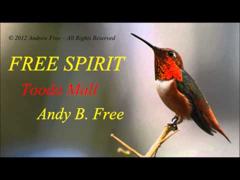 Andy B. Free - Tooda Mall - Funny soft rock song from album Free Spirit