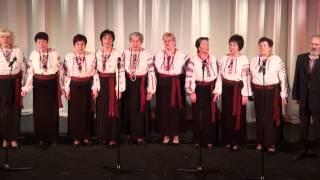 Koncerts Jaungada prieks 13.01 2013 VEF kp.lielajā zālē - 00005.MTS